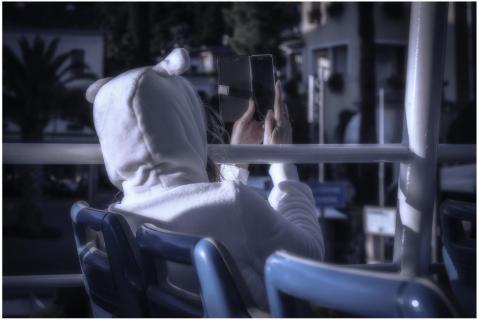 Eisbärin mit Smartphone