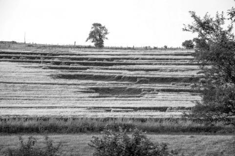 Felder nach dem Sturm