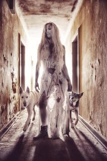 Bianca und ihre Hunde