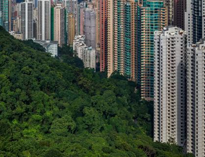 Hong Kong - Regenwald trifft City