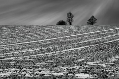 Winter im Flchland