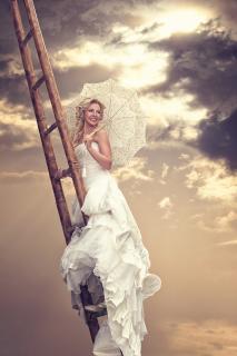 Bride on a Ladder