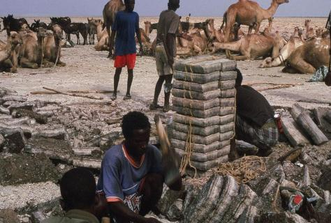 Salzarbeiter,Danakil, Äthiopien