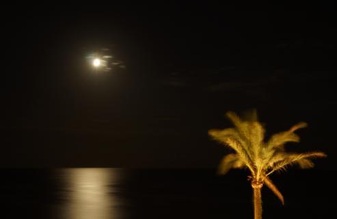 Mondschein auf Mallorca