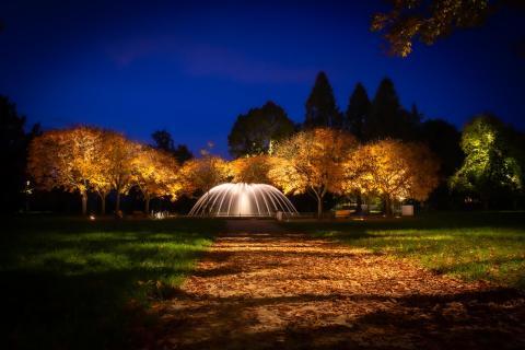 Illuminierter Brunnen im Herbstlaub