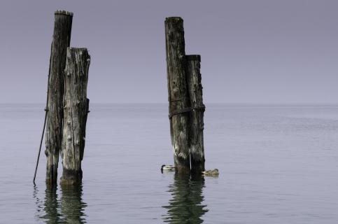 Idylle der Ruhe am See