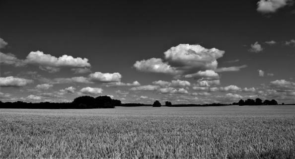 Mecklenburger Land