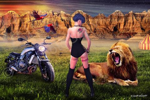 Die Löwenbändigerin