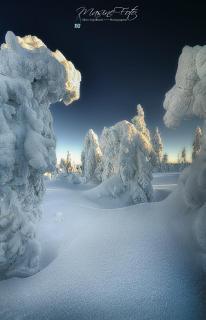 Frozen Gosts