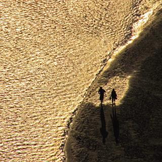 Am Strand beim Mont Saint Michel