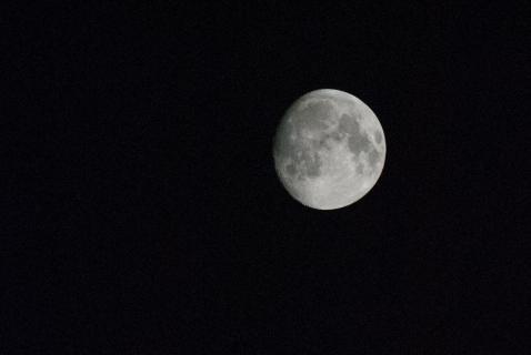 Mond Close Up