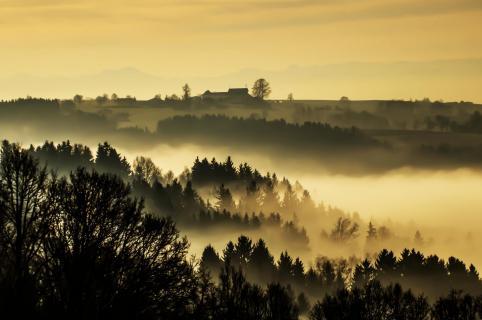 01 Herbst im Nebel_Alfred_Hausner.jpg