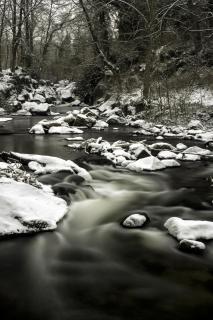 52 Winterbild_Axel_Tegtmeier