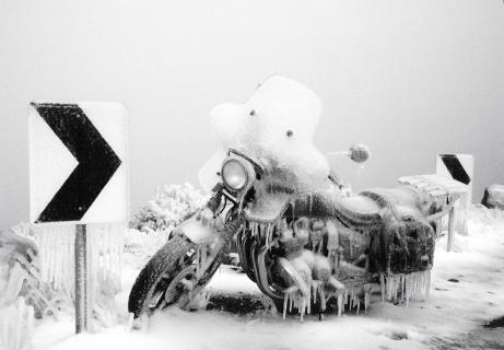 Kawasaki on Ice