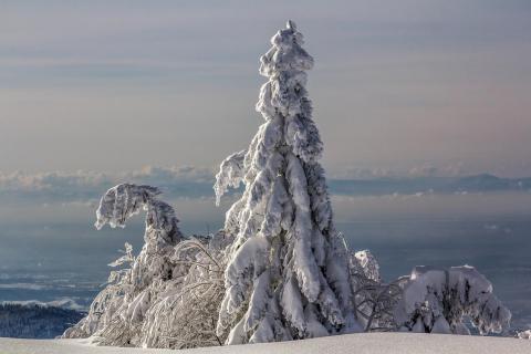 52 Winterbild Peter Nagel