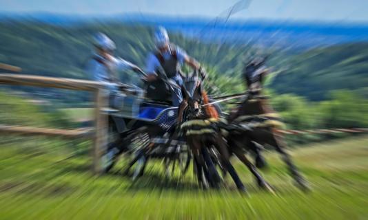 Kutschenrennen