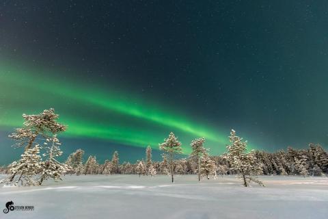 Nordlicht Lapland