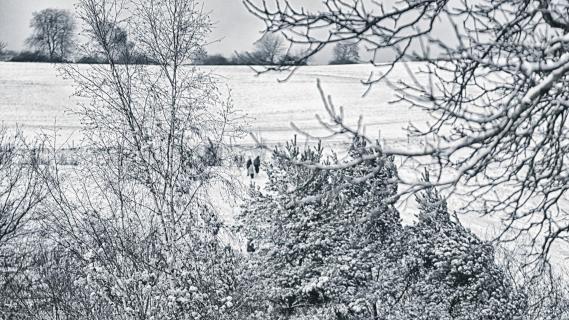 Winterland - Wunderland
