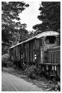 Der Zug nach nirgendwo!