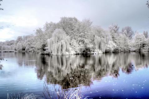 Schlosssee in Wittringen