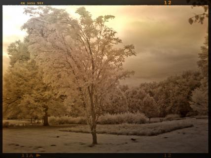 Weiße Landschaft!