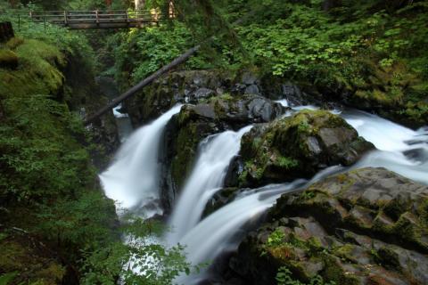 Wasserfälle im Regenwald