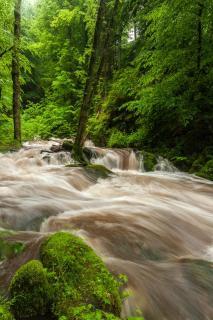 Grobbach bei Hochwasser