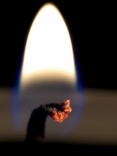 Kerzendocht