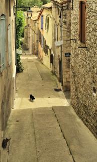 Sisteron-Patrouille