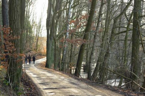 Winterwanderer 2012