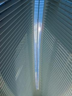 Vertical Skyline