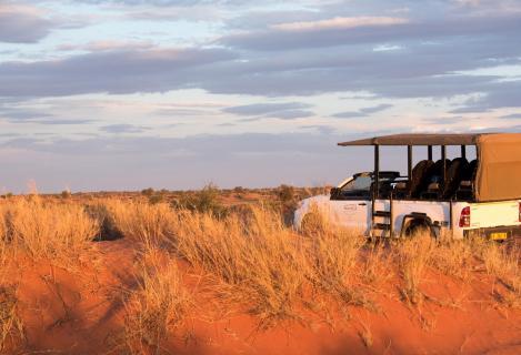 Sundowner in der Kalahari
