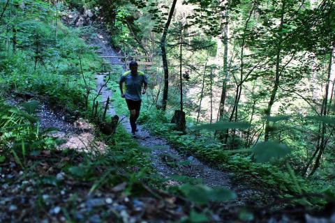 Trailrun in Österreich