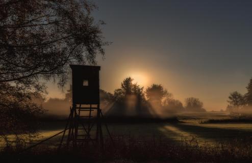 39_Herbst im Nebel_Gabi_Wurst