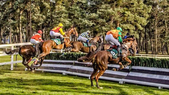 Pferderennen März 2014