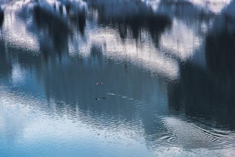 21 Wasser_KerstinDrossard