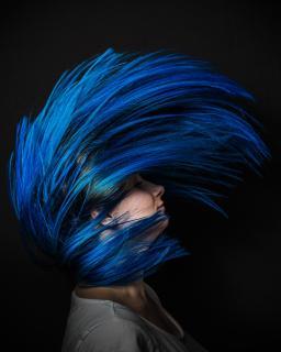Frozen Hair 1