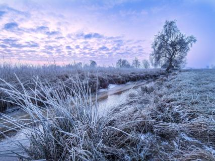 Frostiger Wintermorgen im Teufelsmoor