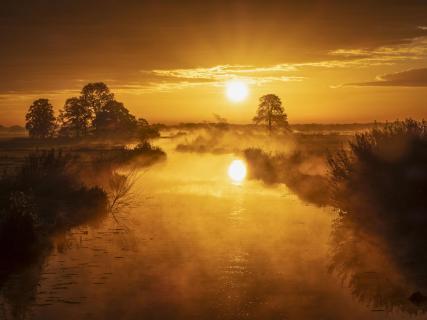 Sonnenaufgang in den Wümmewiesen