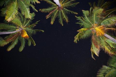 Sternenhimmel auf Hawaii