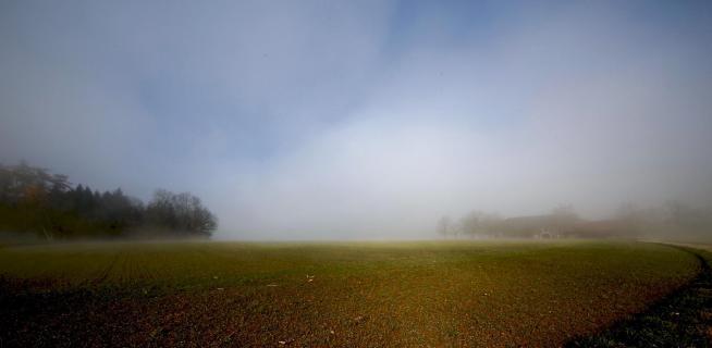 39 Herbst im Nebel_Kurt_Hoedl
