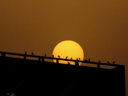 Sonnenuntergang in Erbil