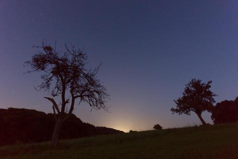 blue hour Odenwald