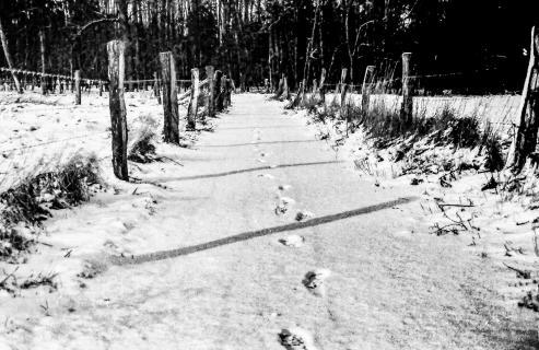 52_Winterbild_Claus_Cramer