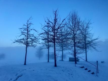 52 Fotografieren_Sie_ein_Winterbild_Klaus_Steinberg