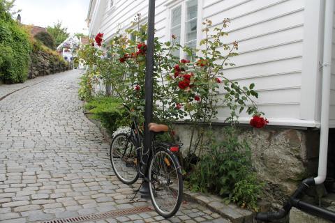 Pflastersteinstraße in der Altstadt Gamle, Stavanger