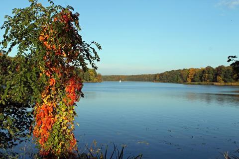 Herbst an der Havel bei Potsdam