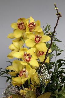 Ein Strauß Orchideen