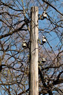 Ländliche Stromversorgung!