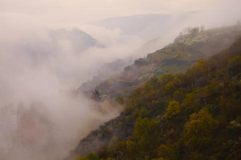 39 Herbst im Nebel_Jürgen_Fischer